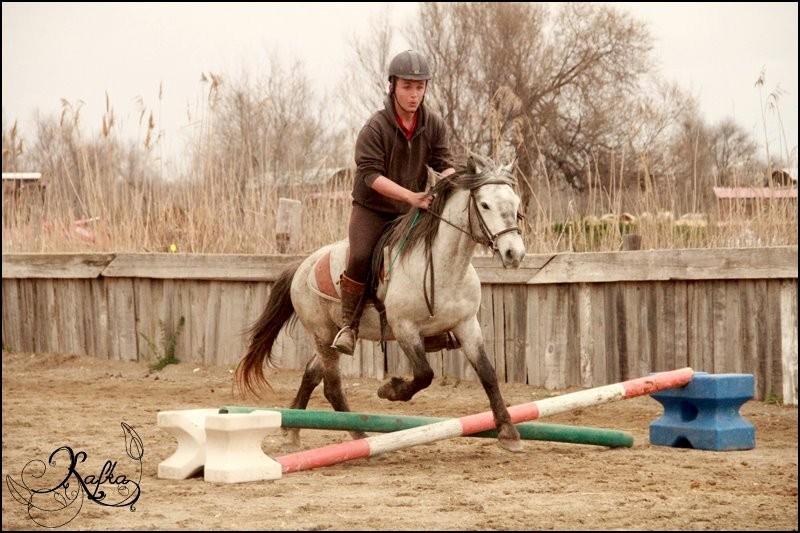 Stages équitation pour ados