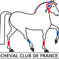 Inf - Logo CCF - V1 (3)