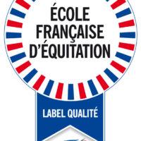 Inf - Logo EFE - V1